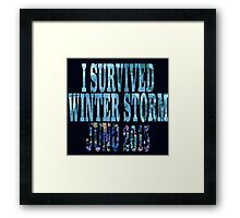 I Survived Winter Storm Juno 2015 Framed Print