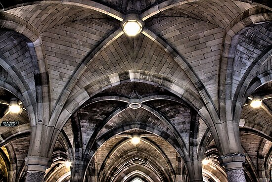 Cloisters ceiling by Linda  Morrison
