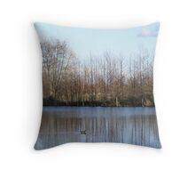 Wintry Lake Throw Pillow