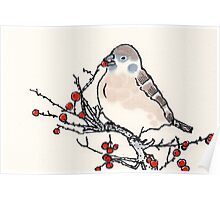 Winter Sparrow Poster
