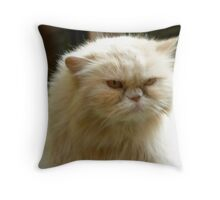 Sour Puss Throw Pillow