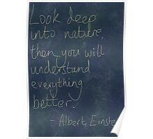 Nature Einstein Quote Poster