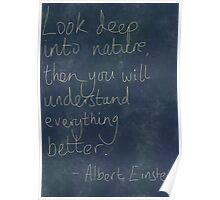 Nature Einstein Quote Poster