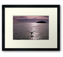 Paradise Framed Print
