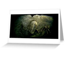 Mythical Flying Trilobite Fossil II Greeting Card