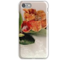 Ice cold iPhone Case/Skin