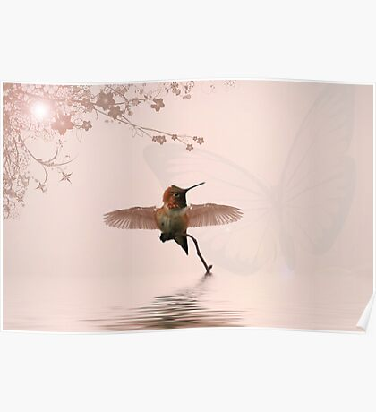 Hummingbird Dreams Poster