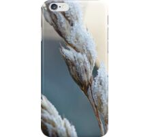 Dormant Seed iPhone Case/Skin