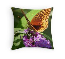 Wings of a Butterfly Throw Pillow