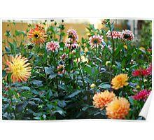 German Garden Poster