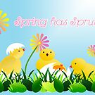 Spring has Sprung by Shelley Neff