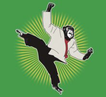 Karate Chimp by Rossman72