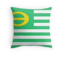 us ecology flag Throw Pillow