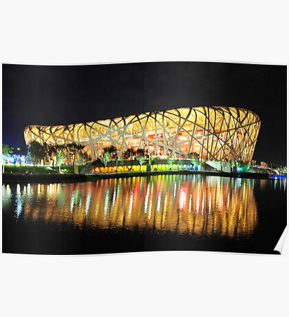 Bird Nest on a Clear Night Poster
