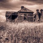 Abandoned to the elements by raymac