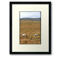 Indwe Framed Print