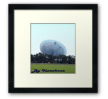 The Dish from a Paddock Framed Print