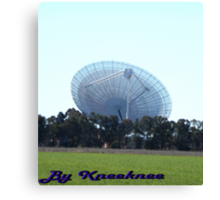 The Dish from a Paddock Canvas Print