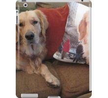 Willow Pillow iPad Case/Skin
