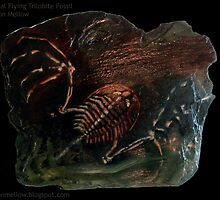 The Flying Trilobite -Collection 1 by Glendon Mellow