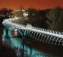 The Living Bridge by Donal Lyne