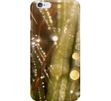 Bokeh waterdrops on grass blades III iPhone Case/Skin
