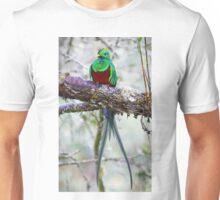 Resplendent Quetzal T-Shirt