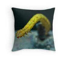 What do you have there? Throw Pillow