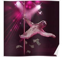 Sloth Stripper Poster