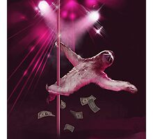 Sloth Stripper Photographic Print