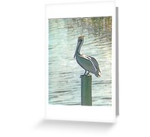 Pelican Roost Greeting Card