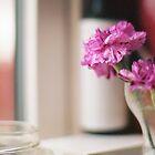 carnation in the window by beebite