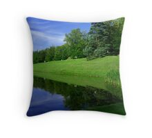 Mirror on The Ground Throw Pillow