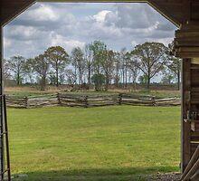 Spring View by Susan Nixon