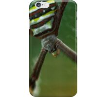 St Andrews iPhone Case/Skin