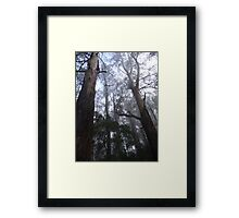 Ashes in the mist Framed Print