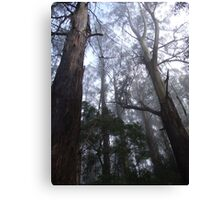 Ashes in the mist Canvas Print