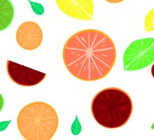 Colorful citrus background (White) Sticker
