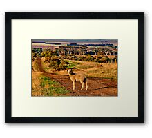 """The Lost One"" Framed Print"
