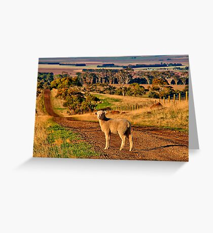 """""""The Lost One"""" Greeting Card"""