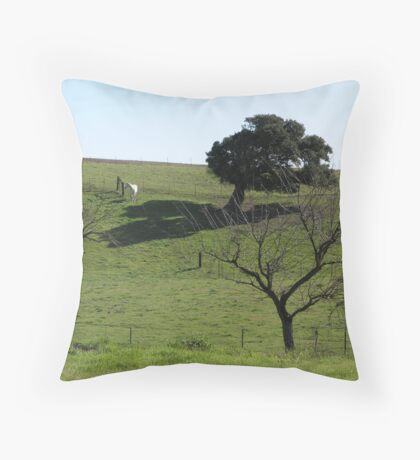 Pasture Shade Tree White Horse Throw Pillow