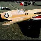 R/C Model series #3 - Curtis P40 Warhawk by MikeO