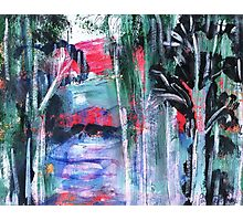 Australian  River Scene Photographic Print