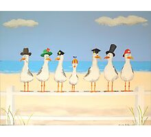 Seagulls with Hats Photographic Print