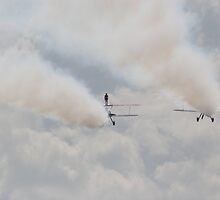 wing walker in the cloud by carlawool