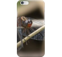 Cool Dragon fly 0001 iPhone Case/Skin