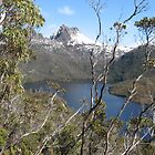 Cradle Mountain by Kymbo