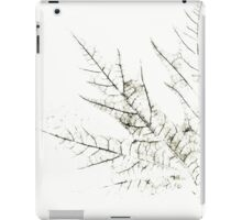 Mapple Leaf in White iPad Case/Skin