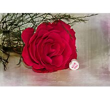 Love YOU Rose  Photographic Print