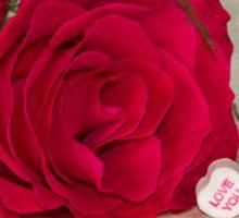 Love YOU Rose  Sticker